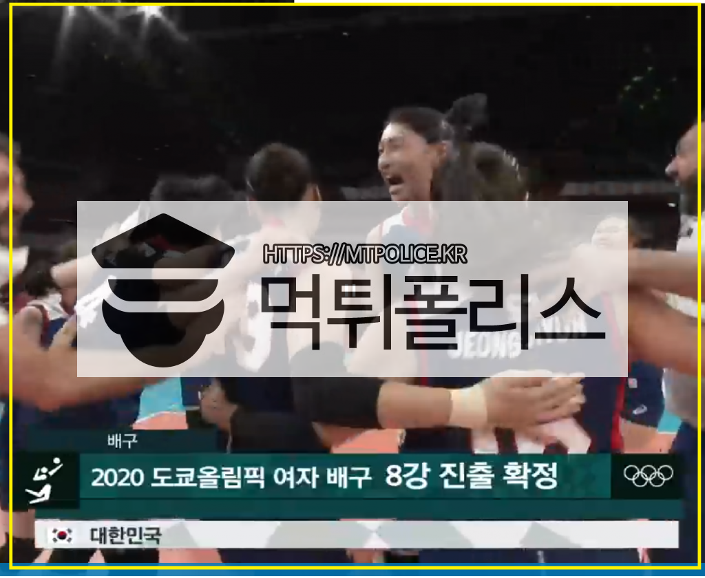 김연경 사진,김연경 MVP, 챔피언스리그 김연경,여자배구 패턴 - 먹튀폴리스